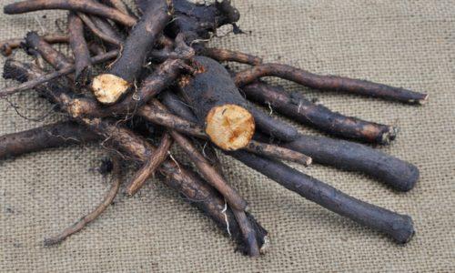 Мазь из корня окопника можно приготовить в домашних условиях