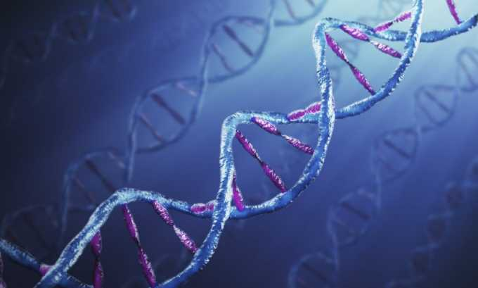 Причиной возникновения грыжи могут стать и генетические болезни