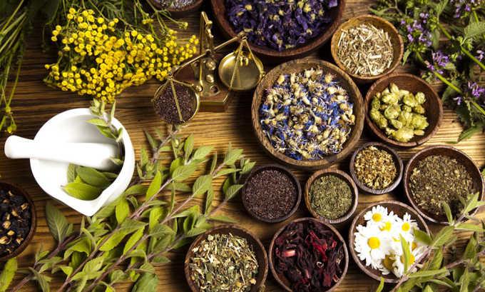 Для лечения грыжи пупка широко используются народные методы, которые основаны на применении лекарственных растений