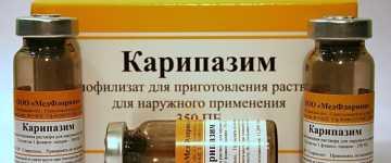 Методика проведения электрофореза с Карипазимом для здоровья позвоночника