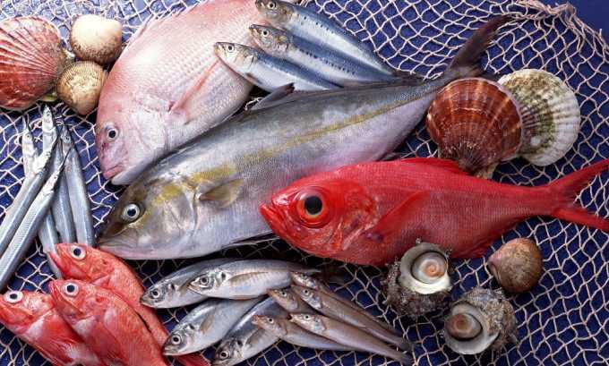 При грыже позвоночника поясничного отдела рекомендуется употреблять рыбу