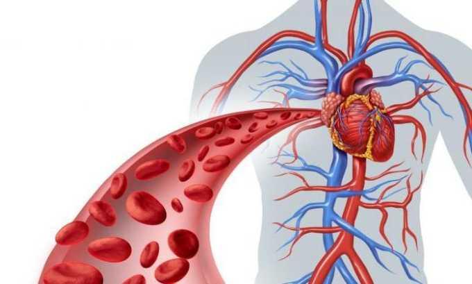 За счет правильно выполненных упражнений улучшается кровообращение во всем теле, а главное в поврежденном участке (поясничного отдела)