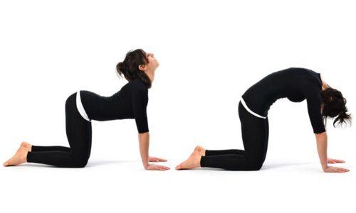 В период ремиссии к основному комплексу можно добавлять упражнения, выполняемые стоя на четвереньках, прогибания и выгибания поясницы с максимальной амплитудой